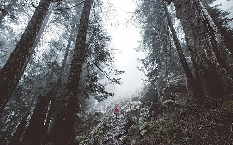 Гора Pilchuck, штат Вашингтон