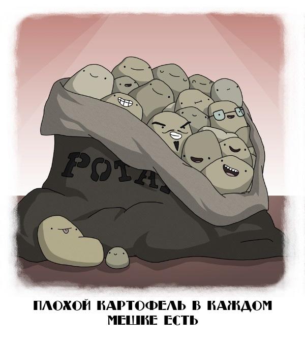 Плохой картофель в каждом мешке есть