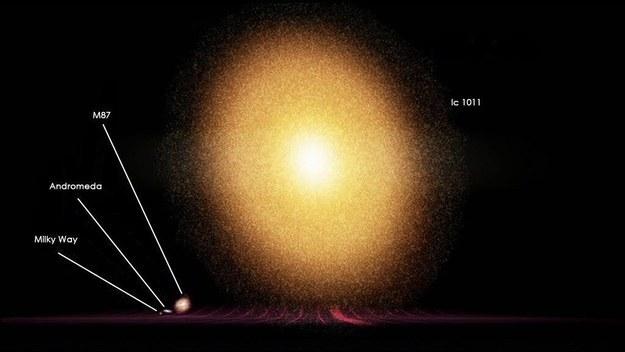 Сравнение млечного пути с другими галактиками
