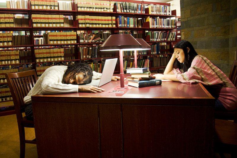 спит в библиотеке